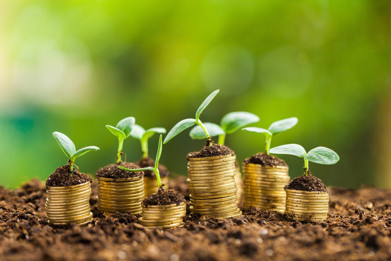 finanza-sostenibile-cose-e-come-funziona
